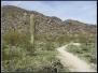 Desert Classic - South Mountain