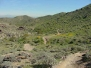 Javelina Trail - South Mountain