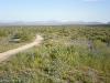 Pemberton Trail, McDowell Mountain Regional Park