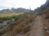 Trail 100, Phoenix Mountain Preserve