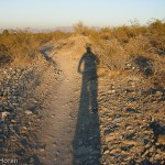 Trail 100 – Phoenix Mountain Preserves Ride