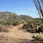 Pima and Dynamite Trail Reviews