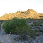 Trail 100 Review – Phoenix Mountain Preserve