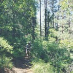 Spruce Mountain Trail 307 – Prescott, AZ