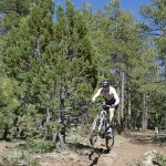 Sunset Trail – Mt. Elden – Flagstaff, AZ