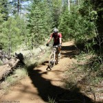 Mountain Biking: Tips for Beginners
